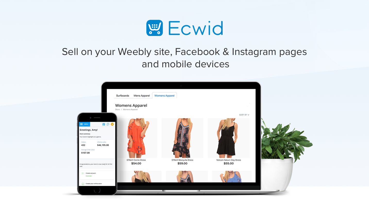 Ecwid you can sell on weebly site, facebook and IG pages