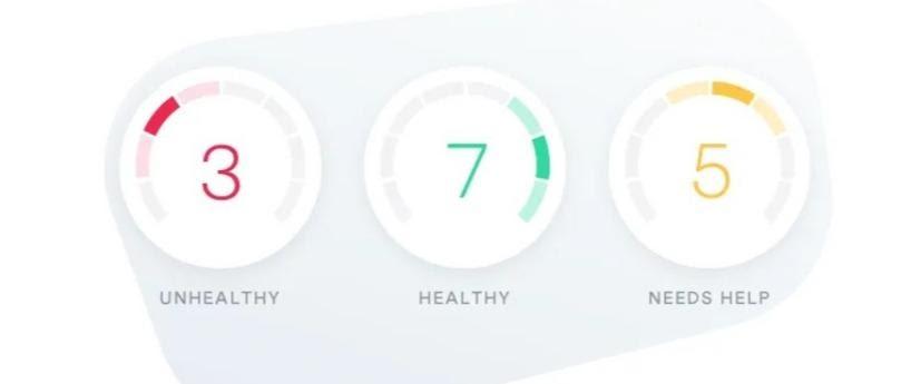 dashboard stats