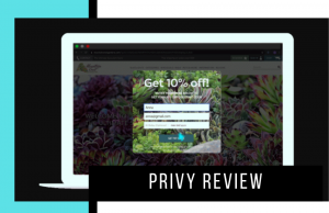 Privy Review: Do We Recommend?